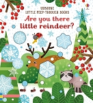 Usborne  'Are You There Little Reindeer' Book