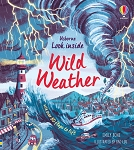 Usborne Look Inside Wild Weather Book