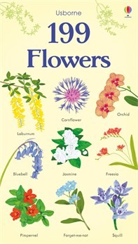 Usborne '199 Flowers' Book